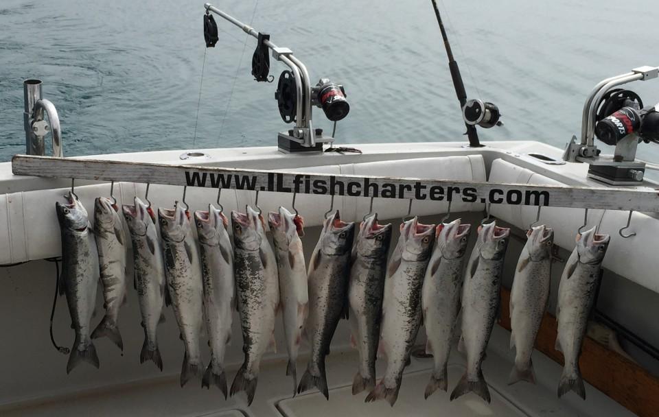 fishagain17